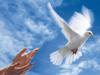 dialogo inter-religioso